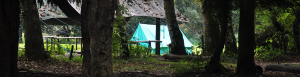 Whitwell Hall Campsite Image