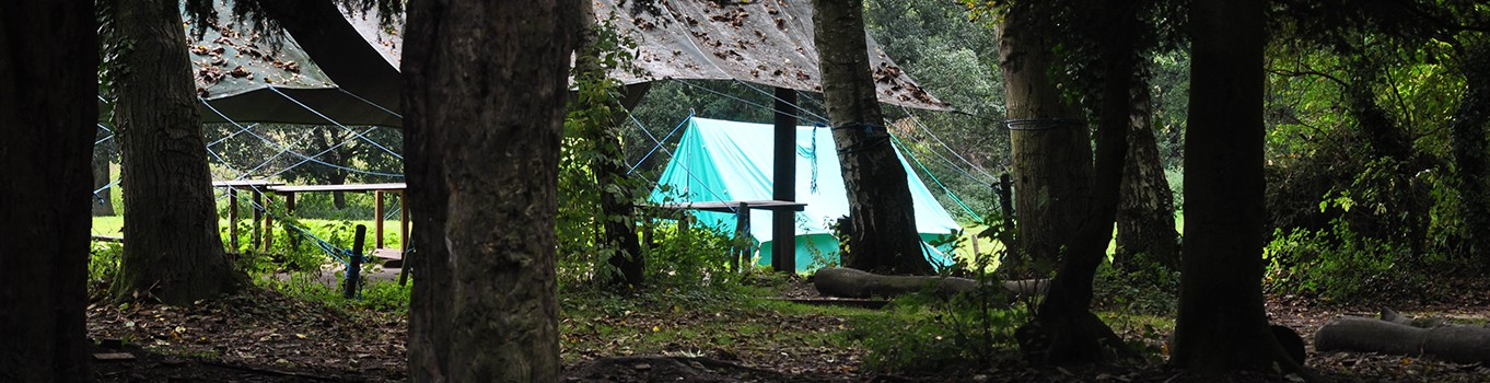 whitwell-hall-campsite1